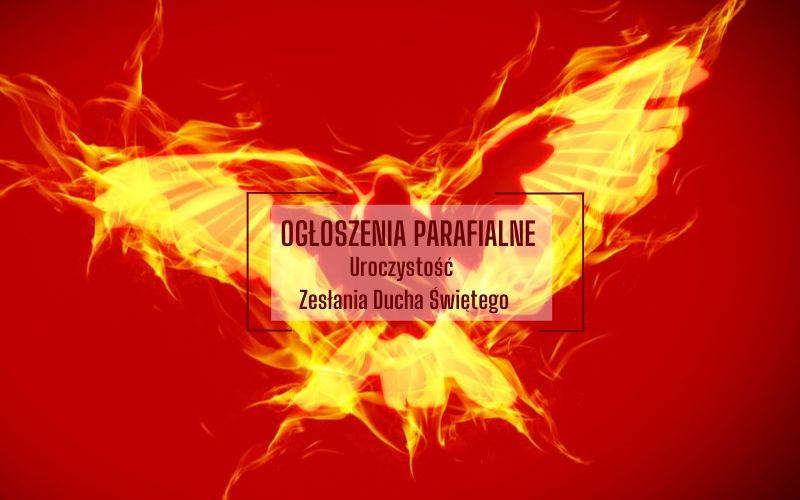 Niedziela Zesłania Ducha Świętego (31 V 2020)